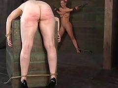 Babes nipples acquires painful torturing